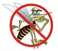 Piauí reduz em 36,4% os casos de dengue, diz Sesapi
